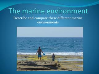 The marine environment