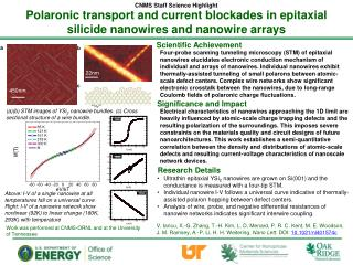 Polaronic  transport and current blockades in epitaxial silicide nanowires and nanowire arrays