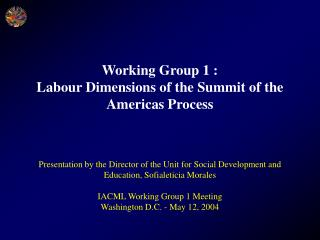 Working Group 1 : Labour Dimensions of the Summit of the Americas Process