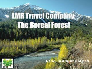 LMR Travel Company:  The Boreal Forest