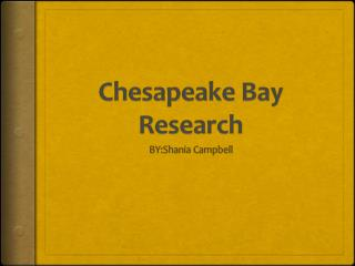 Chesapeake Bay Research