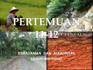 PERTEMUAN  11-12