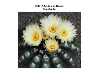 Unit 17 Acids and Bases Chapter 14