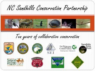 NC Sandhills Conservation Partnership
