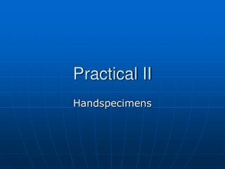 Practical II
