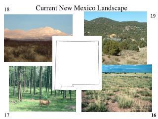 Current New Mexico Landscape
