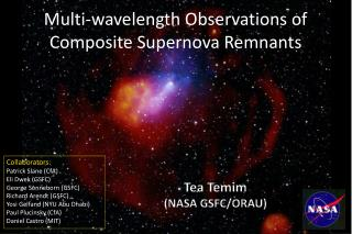 Multi-wavelength Observations of Composite Supernova Remnants
