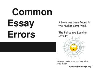 Common Essay Errors