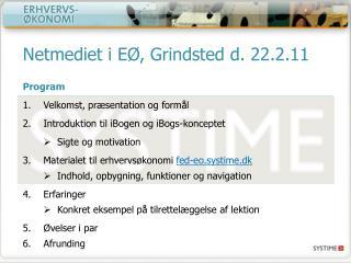 Netmediet  i EØ, Grindsted d. 22.2.11