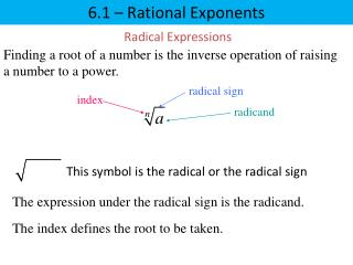 6.1  –  Rational Exponents