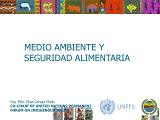 Ing. MSc. Elisa Canqui Mollo CO-CHAIR OF UNITED NATIONS PERMANENT FORUM ON INDIGENOUS ISSUES