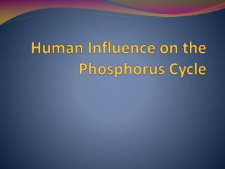 Human Influence on the Phosphorus Cycle
