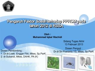 Pengaruh Faktor Sosial terhadap  PPROM  pada tahun  2012 di RSSA