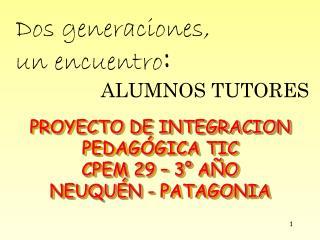 PROYECTO DE INTEGRACION PEDAGÓGICA TIC  CPEM  29  – 3° AÑO NEUQUÉN - PATAGONIA