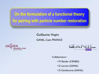 On the formulation of a functional theory for pairing with particle number  restoration