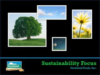 Sustainability Focus