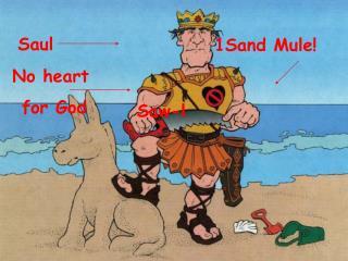 1Sand Mule!