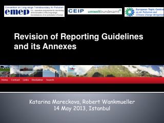Katarina Mareckova, Robert  Wankmueller 14 May 2013, Istanbul