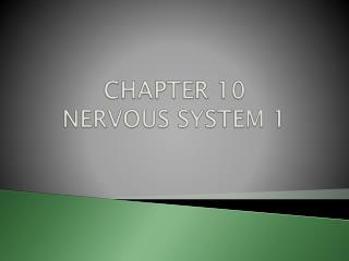 CHAPTER 10 NERVOUS SYSTEM 1