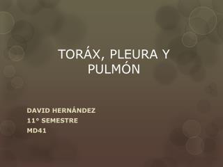 TORÁX, PLEURA Y PULMÓN