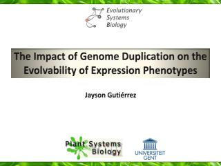 The Impact of Genome Duplication on  t he Evolvability of Expression Phenotypes