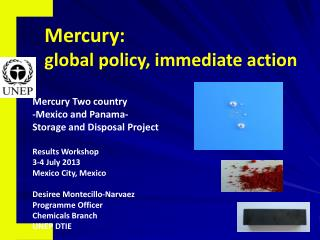 Mercury: global policy, immediate action
