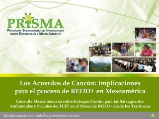 Los Acuerdos de Canc�n: Implicaciones  para el proceso de REDD+ en Mesoam�rica