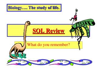 SOL Review