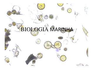 BIOLOGIA  MARINHA