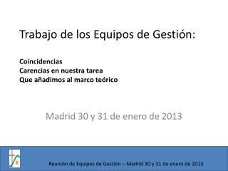 Madrid 30 y 31 de  enero  de 2013