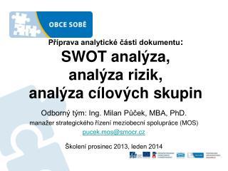 Příprava analytické části dokumentu :   SWOT analýza,  analýza rizik,  analýza cílových skupin