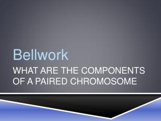 What are the components of a paired chromosome