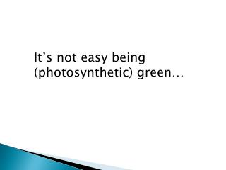 It's not easy being (photosynthetic) green…