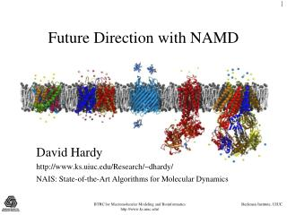Future Direction with NAMD