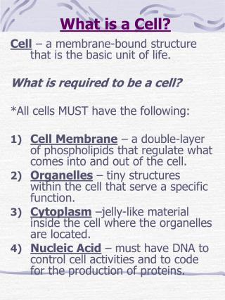 What is a Cell?