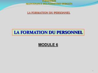 FORMATION MAINTENANCE DES PERIMETRES IRRIGU È S