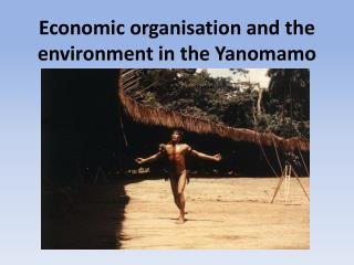 Economic organisation and the environment in the Yanomamo