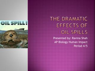 The dramatic effects of  Oil Spills