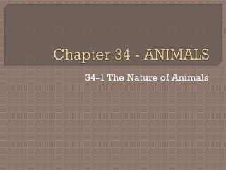 Chapter 34 - ANIMALS