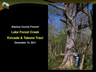 Alachua County Forever Lake Forest Creek Kincade & Tabone Tract December 13, 2011
