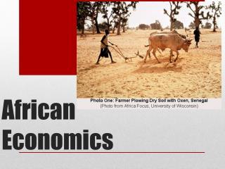 African Economics