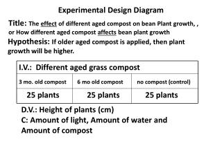 Experimental Design Diagram