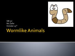 Wormlike Animals