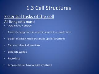 1.3 Cell Structures