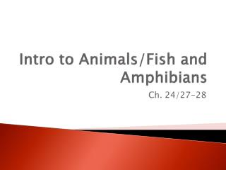 Intro to Animals/Fish and Amphibians