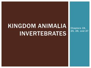 Kingdom  animalia Invertebrates