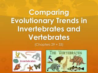 Comparing Evolutionary Trends in Invertebrates and Vertebrates
