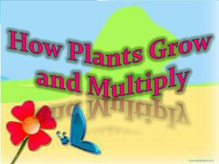 How Plants Grow  and Multiply