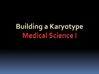 Building a  Karyotype Medical Science I
