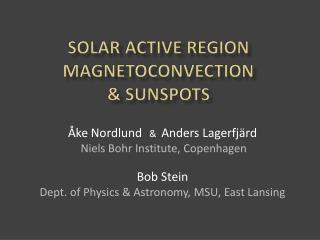 Solar ACTIVE REGION MAGNETOCONVECTION  & SUNSPOTS